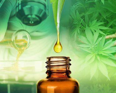 Cannabis Provider