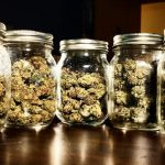 buy world class weed through online store